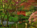 2人の女性を結んだ秘密の花園!イギリスの美しき日本庭園